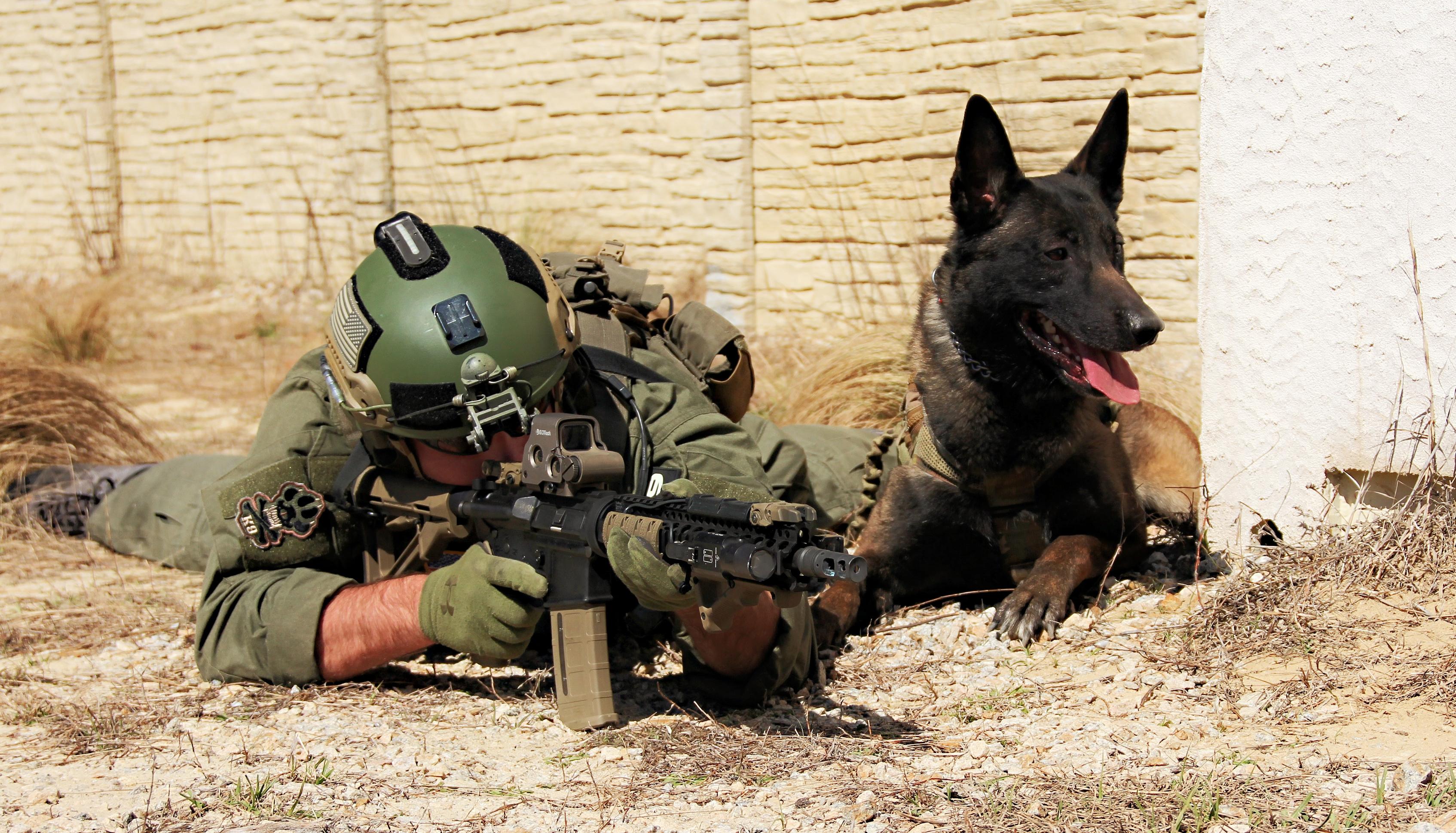 Tactical integration